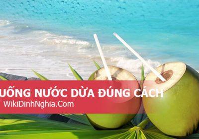 Uống nước dừa đúng cách ra sao, uống nước dừa có mập không, uống hằng ngày có tốt không?