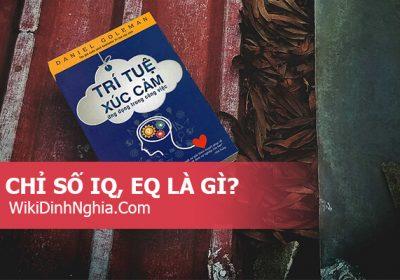 Chỉ số IQ, EQ là gì, IQ và EQ khác nhau như thế nào, cái nào quan trọng hơn, chỉ số EQ bao nhiêu là cao?