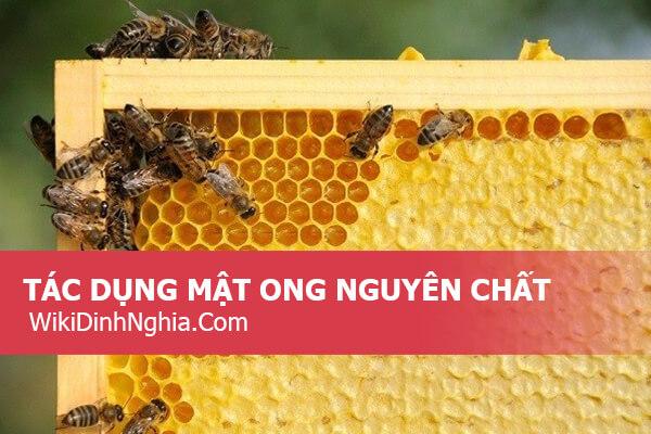 Uống mật ong nguyên chất có tốt không, mua mật ong nguyên chất ở đâu tại Tphcm, giá bao nhiêu 1 lít?